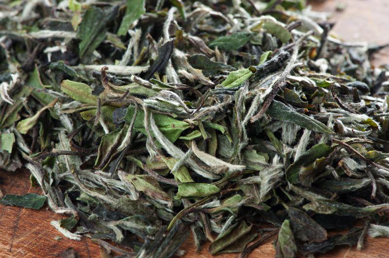 "Weißer Tee ""Pai Mu Tan"""